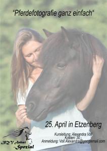 Plakat Pferdefotografie