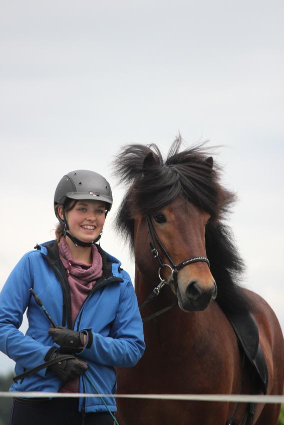 Pferde Bilder Andvari (1)
