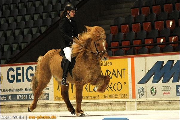 Pferde Bilder Andvari (2)