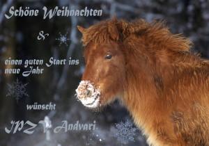 weihnachtsgruesse-andvari